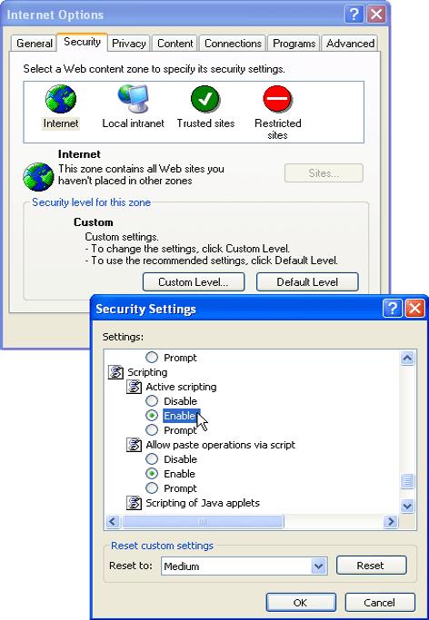 Enabling JavaScript in Internet Explorer 6