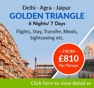 golden triangle tour 6 nights/ 7 days